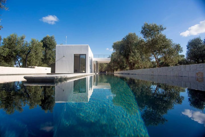Puglia designer villa & pool set in an olive grove