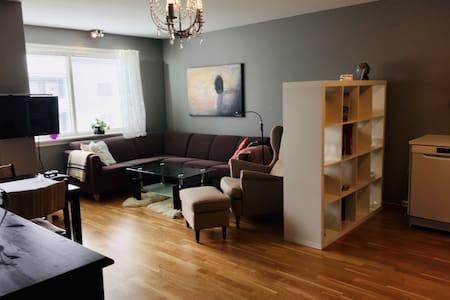 Sentrumsnær leilighet med to soverom og fin utsikt