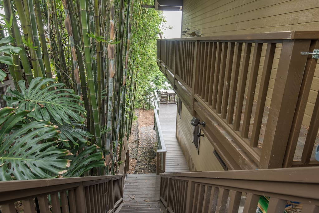A tropical walk to your own private Suite entrance.