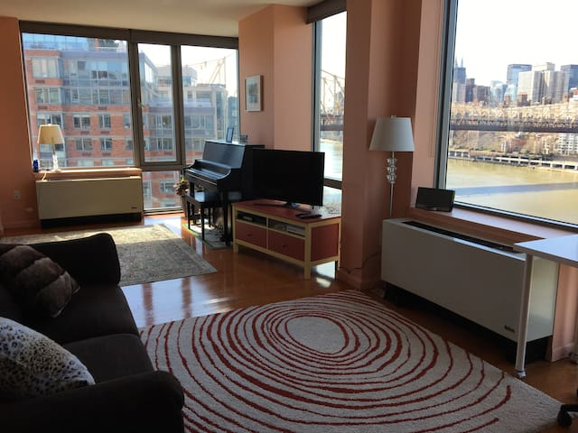 Bedroom with Manhattan view - New York - Daire