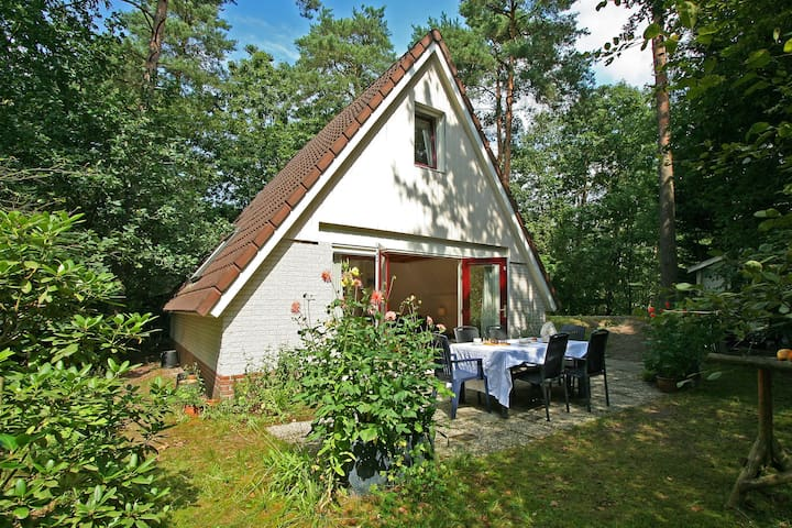 Cosy Holiday Home in Nunspeet near the Forest