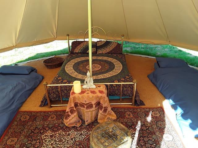 Kiwi Camping 2