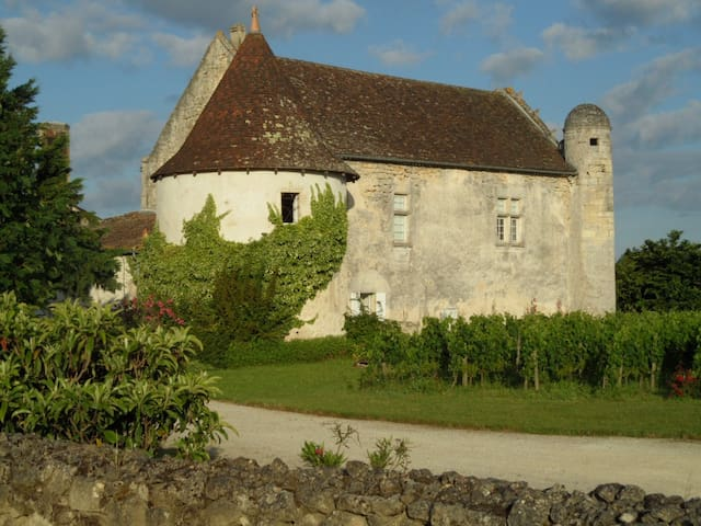 Charming Castle near by Saint Emilion