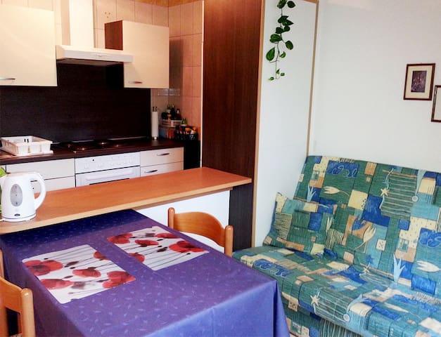 App for 2 in Vita center (massages, gym, yoga) - Rogaška Slatina - Apartamento