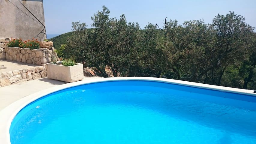 Mljet, nature eco old stone house with pool...