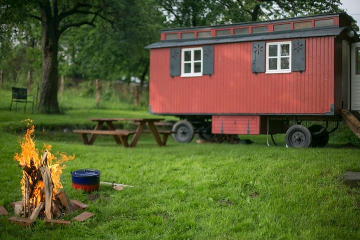 Liebevoll restaurierter Bauwagen im Grünen