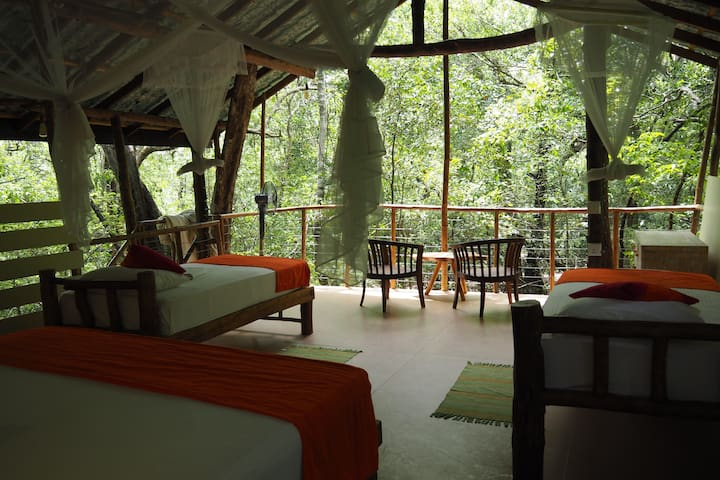 Treehouse living for the family near Sigiriya rock