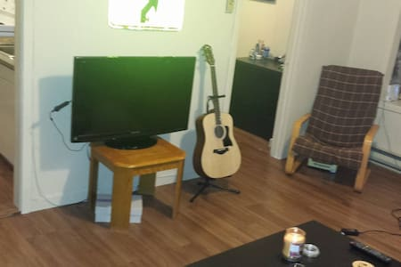 Quiet One-Bedroom in Downtown Kingston! - キングストン - アパート