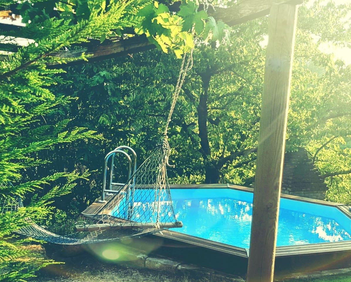 villetta isolata nel bosco...nel silenzio e relax del verde e della natura, con piscina privata