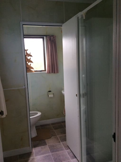 Shower and seperate toilet