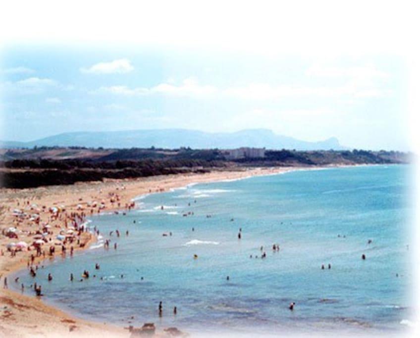 Spiaggia della pineta e della Riserva Naturale