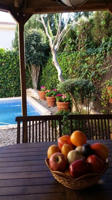 Habitaci n privada en tico casa con piscina maisons for Atico con piscina privada