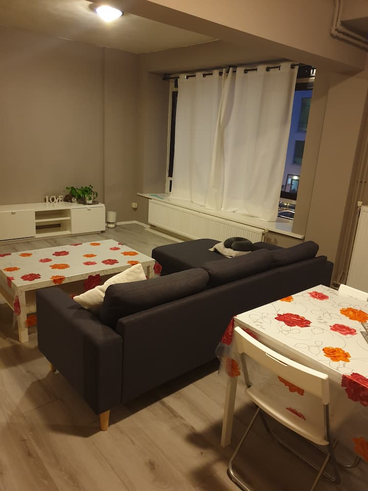 Appartment The Hague for short or long stay