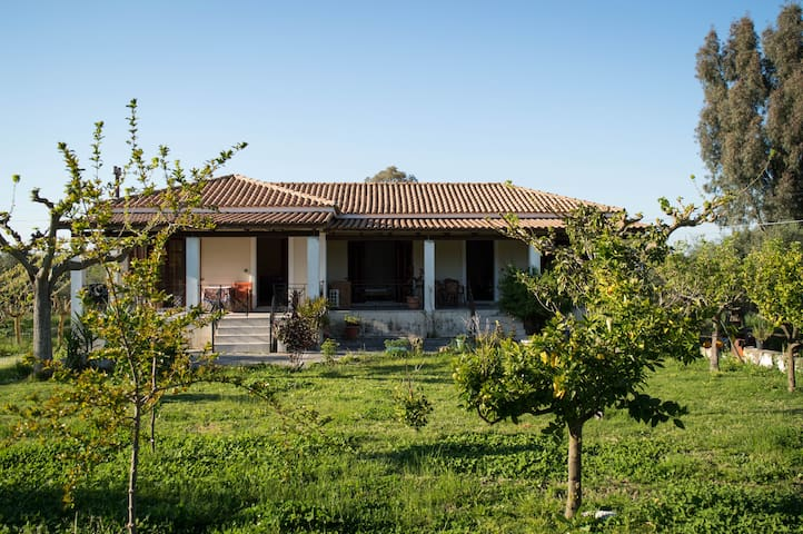 Olive Grove house Zakinthos countryside