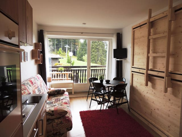 GRIZ5 : Studio on ski slopes, fully renovated