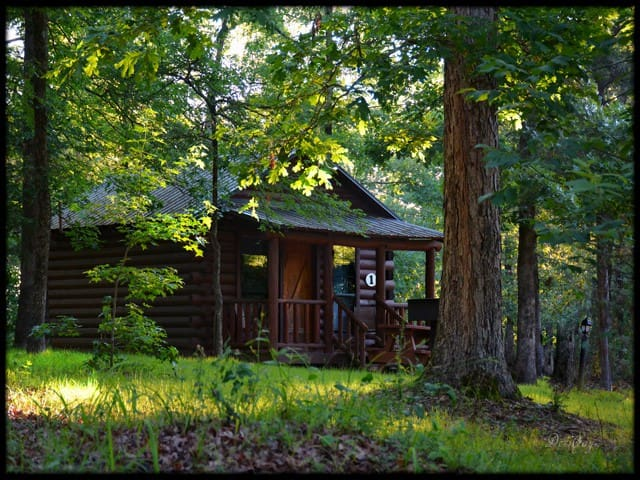 Northern Broken Bow Lake Cabin