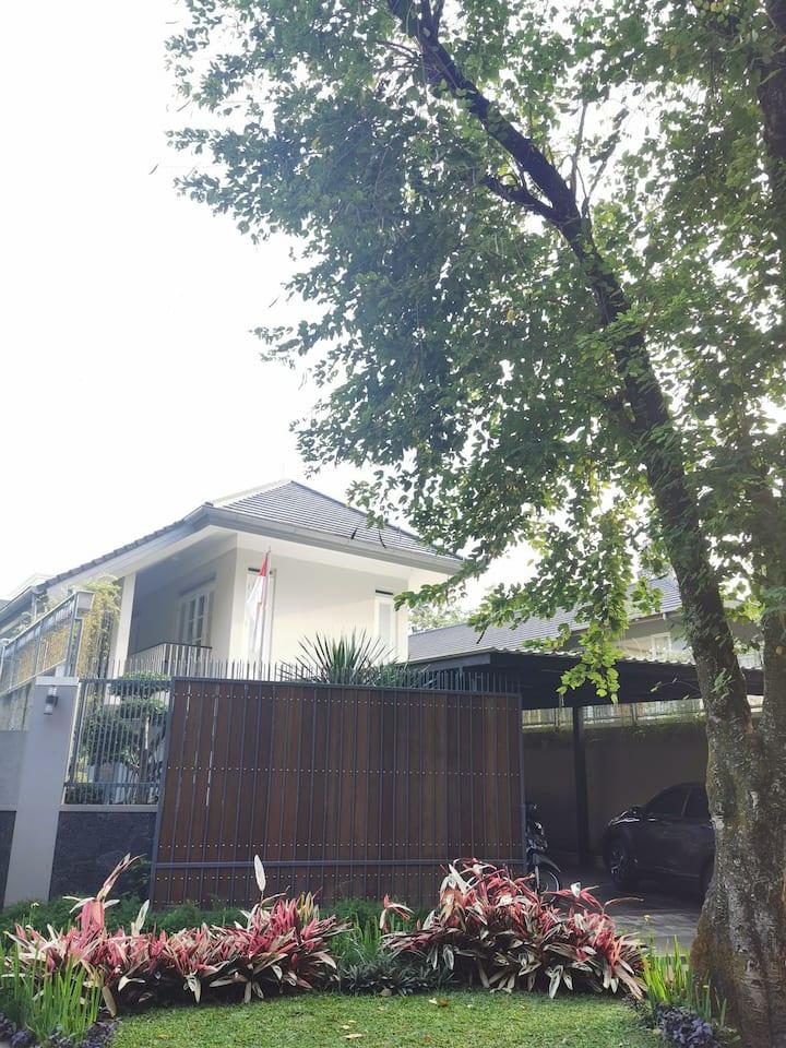Cozy House at Ciumbuleuit, Bandung.
