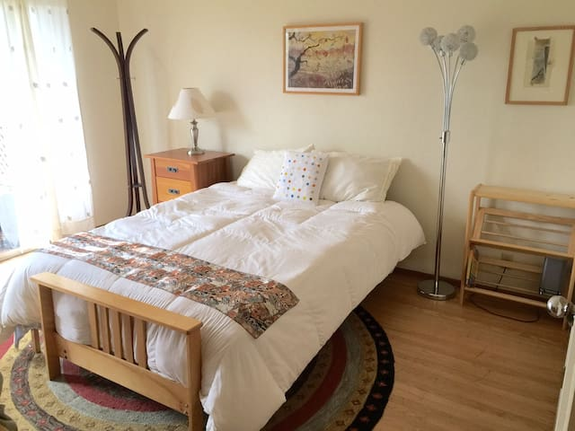 Room with a Queen bed