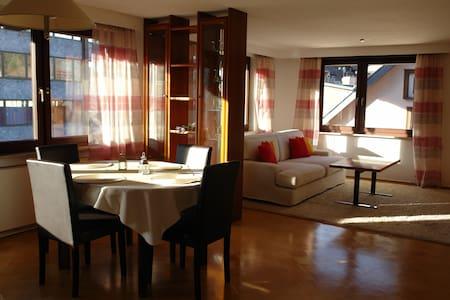 Großes Apartment im Schwarzwald - Bad Wildbad