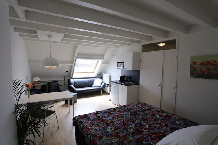 Guest room in centre of Delft