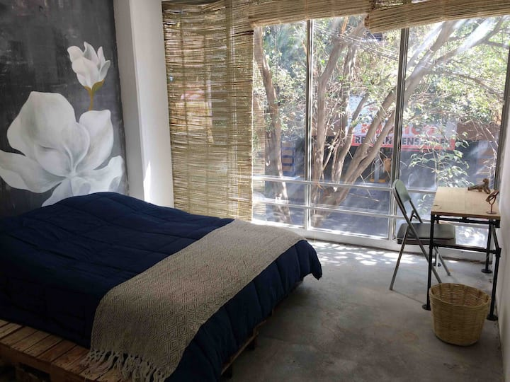 Bright, Spacious Private Room in Central CDMX