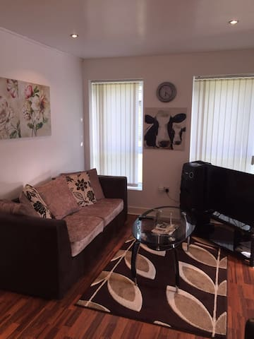 Nice and cosy - Birmingham - Apartament