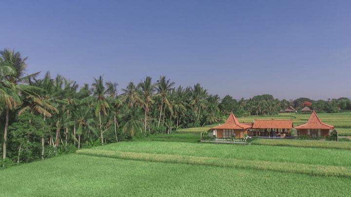 Luxury home in UBUD rice fields - 2BR,  Room #1