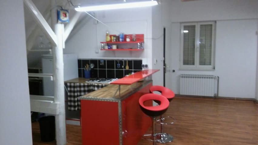 Spacious 3 room apartment near center - Zagreb - Huis