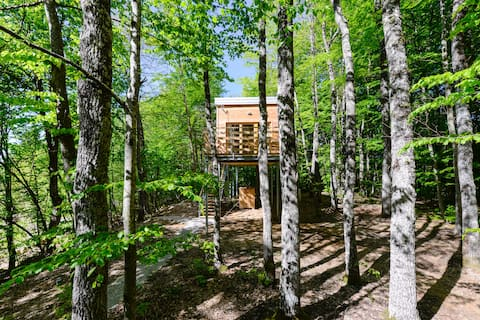 Treehouse Lika 1