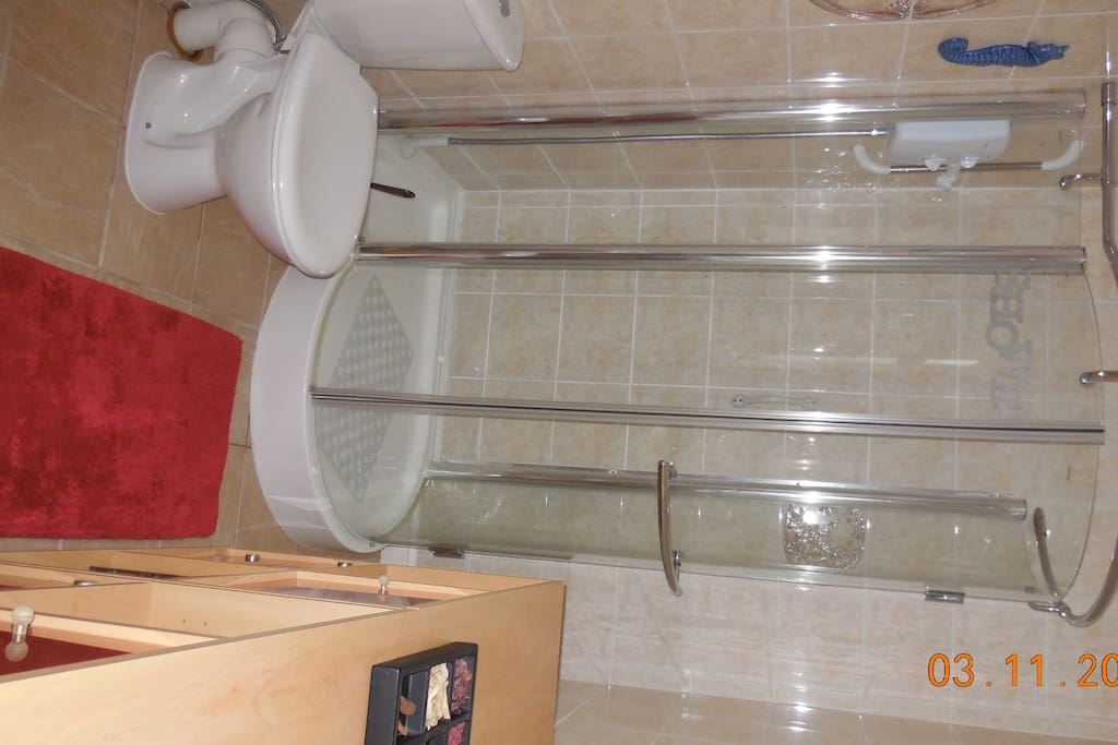 Ensuite, electric shower, toilet, sink