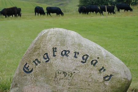 Feriebolig tæt på nationalpark Thy - Bedsted Thy - Casa