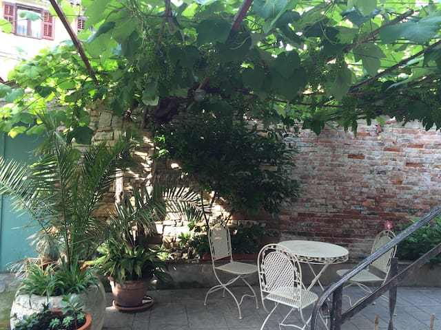 Studio in the heart of the city - Isola - Apartment