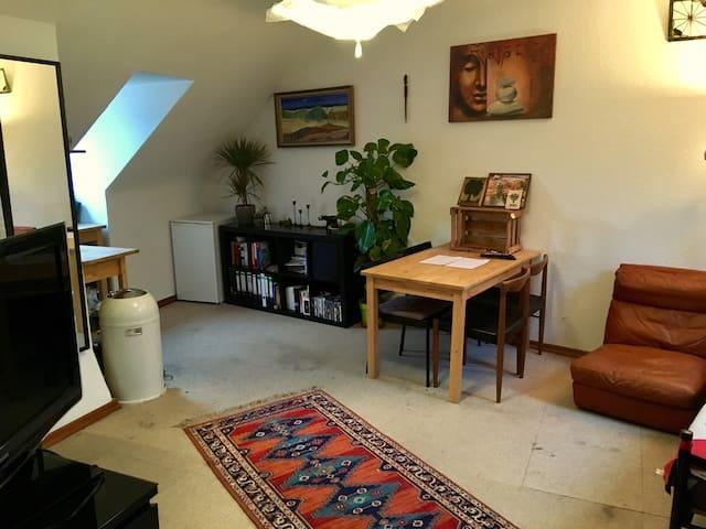 Apartment in der schönen Mainzer Innenstadt