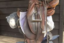 Dads poly stock saddle, still comfy after 44 years