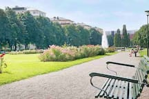 Tessinparken  is Just around the corner and perfect for shorter walks or picnics in the summer