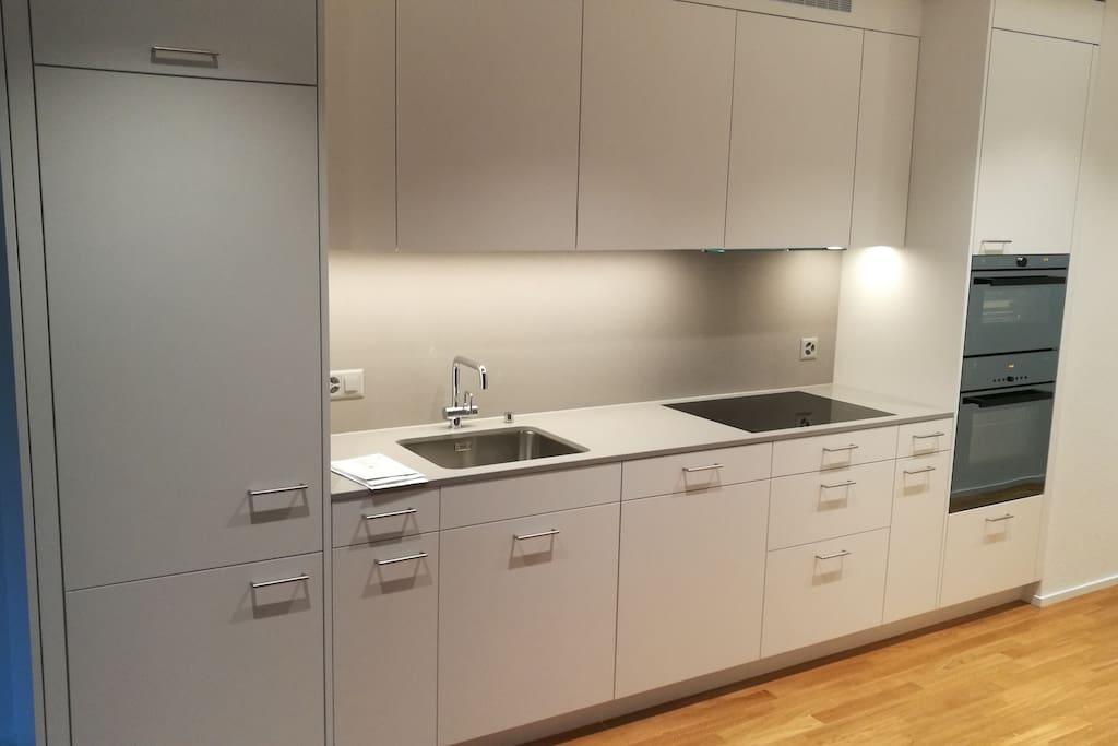 Modern Kitchen, Fridge, Freezer, Oven, Steamer