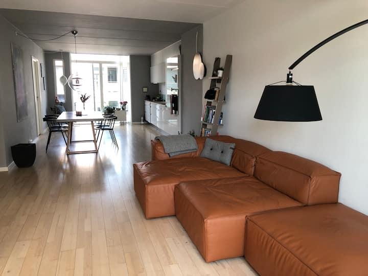 Danish design apartment with the huge windows