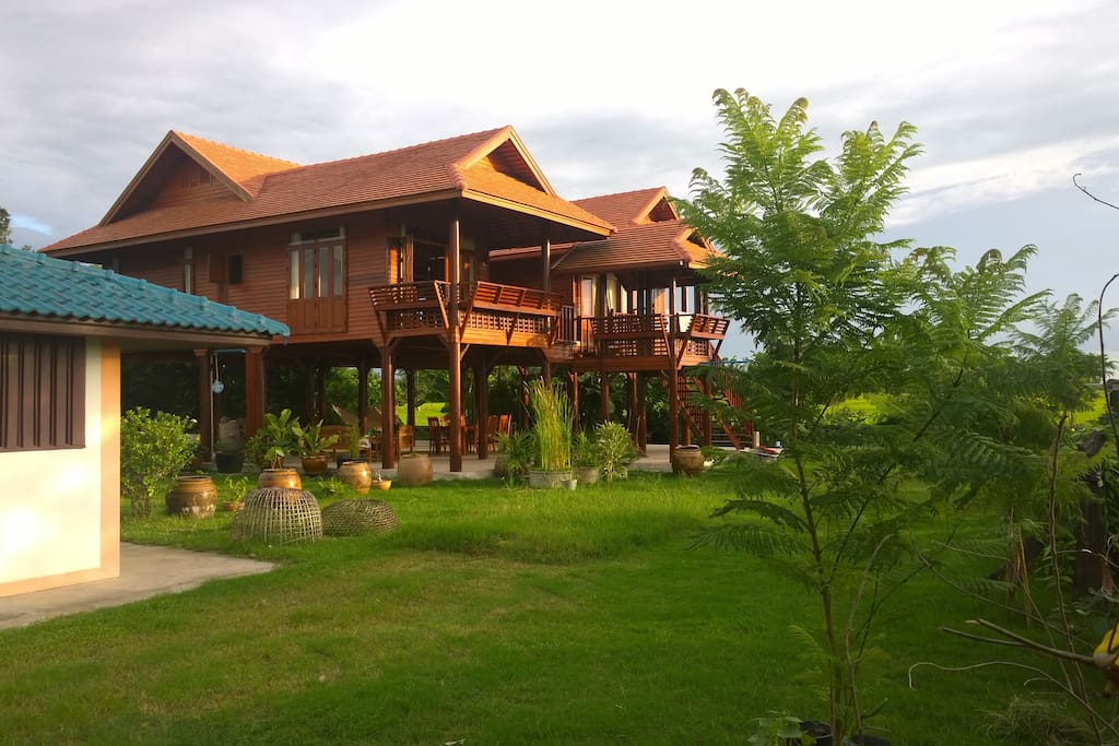 Villa Thaiger, Thai house at rice fields.