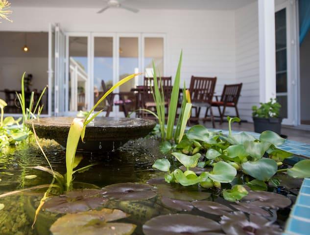 Stunning pond with goldfish