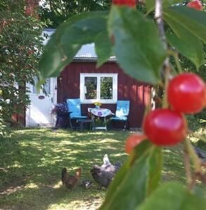 Sommarstuga (lugn og ro)