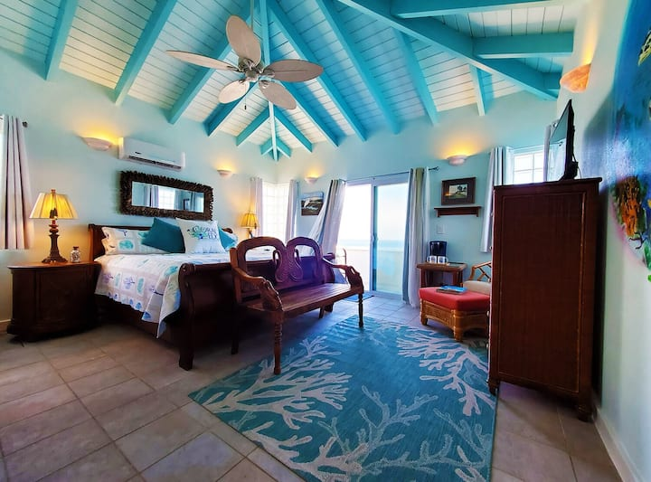 SeaTurtle Room Coral's Edge B&B St Croix USVI