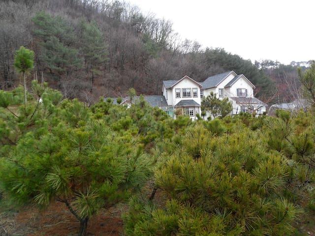 별빛둥지 - 작은곰자리 방 - Cheongil-myeon, Hoengseon - Haus