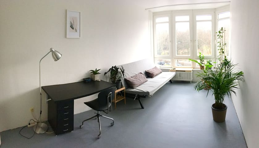 Sunny and cosy room with perfect connection