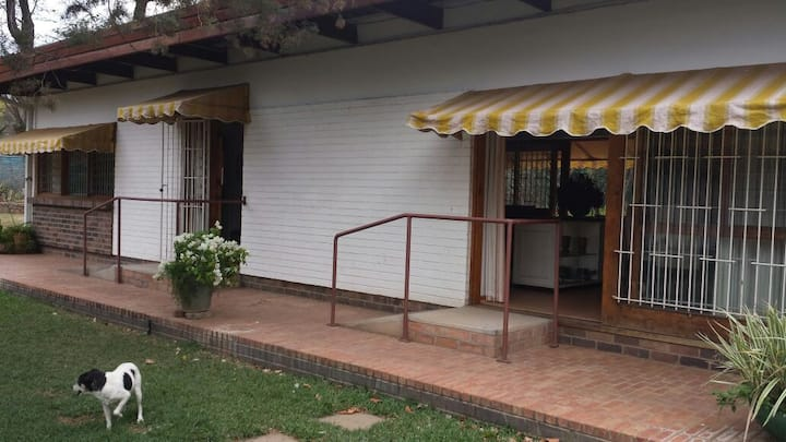 41 Napier Ave, bedroom, bathroom, lounge, dining