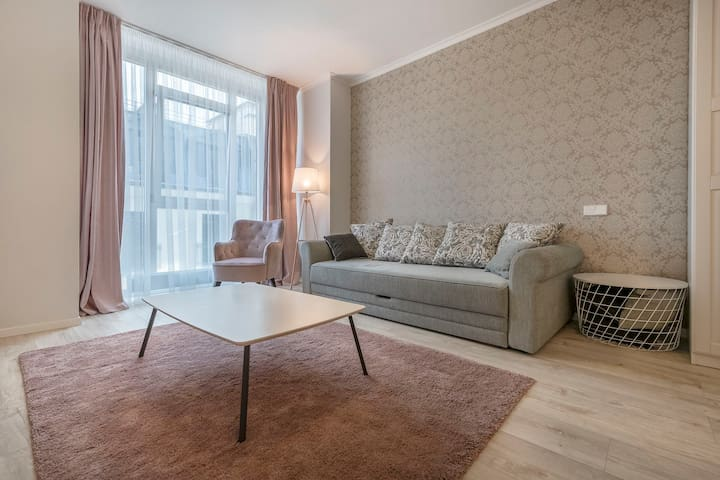 Vilnius City Center Modern Apartment