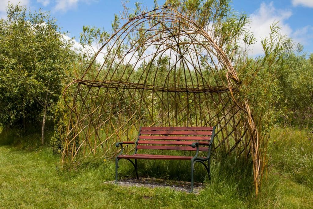 The living willow arbour in the garden, which overlooks the pond.