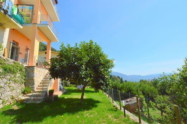 Gezellig vakantiehuis in Camaiore met terras