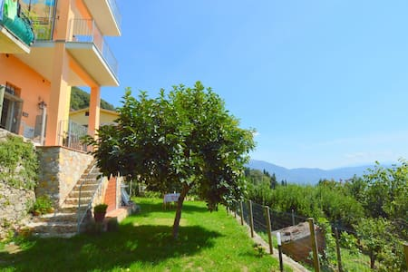 Exquisite Holiday Home in Camaiore near Mountains