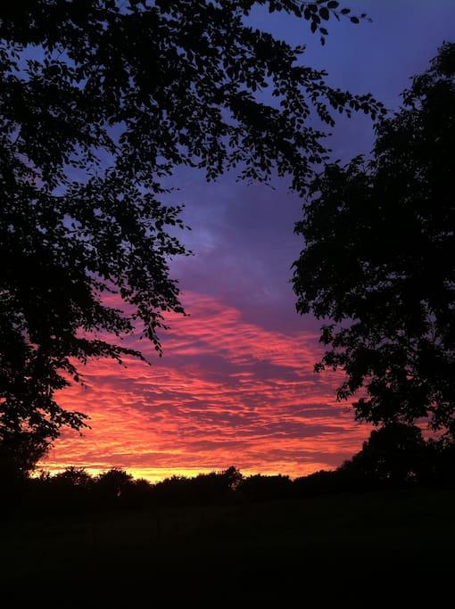 De smukkeste solnedgange her på ejendommen