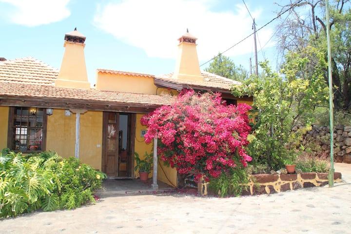 Casa Rural Los Marantes 3 en Puntagorda, La Palma